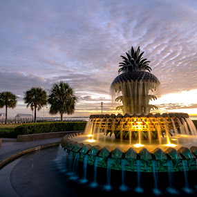 PIneapple 7 by Serge Skiba - City,  Street & Park  Fountains ( clouds, water, exposure, harbor, park, colorful, morning, long, sun, palm, charleston, sky, dawn, color, carolina, fountain, lightpainting, palmetto, south, sunrise, pineapple, welcome, waterfront )