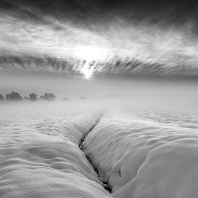 Snow Scene by Nigel Bishton - Black & White Landscapes