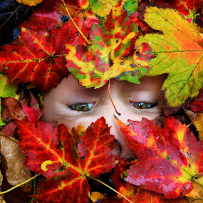 Secret by Olga Charny - Babies & Children Child Portraits ( leaves, eyes, nature, fall, autumn, abscission, folliage )