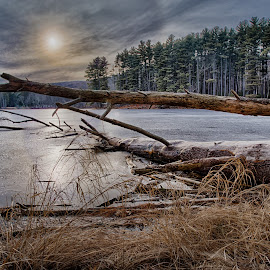 Lake Nawahunta in Harriman by Ronny Mariano - Landscapes Waterscapes ( water, shore, harriman park, clouds, hdr, 2016, plants, lake, forest, landscape, harriman, hiking, city, winter, sky, nature, sunset, trees, weather, pine )