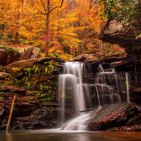 Autumn Whispers by Angela Taylor - Landscapes Waterscapes ( water, orange, mill creek, waterfalls, peaceful, fall colors, autumn leaves, new river gorge, west virginia, waterfall, waterscapes, fallen leaves, nature art, fall leaves, nature, autumn, fall, creek, nature photography, autumn colors, rocks, hike,  )