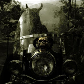 Devil by Mikaela Moberg - Transportation Motorcycles ( outdoor, motorcycle, devil, woods )