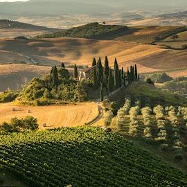 Tuscany, Italy by Krissanapong Wongsawarng - Landscapes Travel ( tuscany, summer., summer, travel, house, morning, landscape, light, italy )