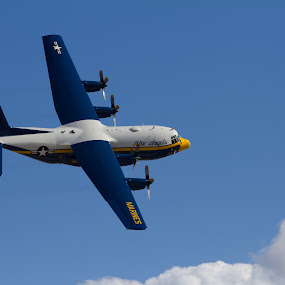 Blue Angels Fat Albert by Marc Zangger - Transportation Airplanes ( fat albert, curve flight, hercules, c-130, blue angels )