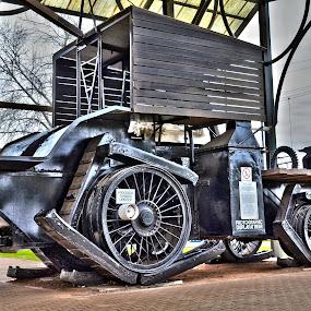 The Big Lizzie by Bradley Bath - Transportation Trains