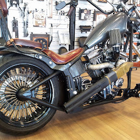 Harley with rifle by Milan Z81 - Transportation Motorcycles ( harley, bike, rifle )
