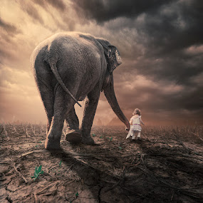The little companion II by Caras Ionut - Digital Art People ( clouds, reflection, tutorials, ioana, mounting happy, elephant, ground, journey, stage, heat, manipulation, corn, spinner, psd, sky, girl, mounting, head, light )