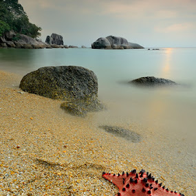 be lost by Dody Herawan - Landscapes Beaches