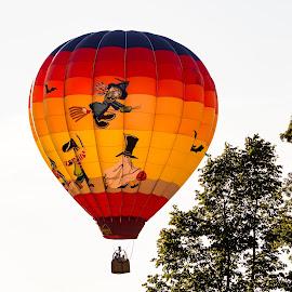 Halloween Balloon by Doug Milligan - Transportation Other ( decor, wall art, orange, wall decor, hot air balloon, red, witch, art, yellow, balloons, halloween )