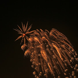 Forth of July 2015 by Ron Olivier - Abstract Fire & Fireworks ( forth of july 2015,  )