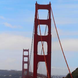 Looking South at the Golden Gate Bridge by Patty Hartigan - Buildings & Architecture Bridges & Suspended Structures ( landmark, golden gate bridge, marin, bridge, landscape, san francisco,  )