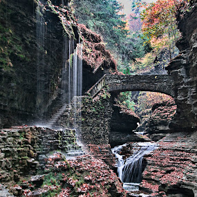 Beyond Beautiful by Vicki Overman - Landscapes Waterscapes ( fall leaves, rock formations, waterfall, trees, watkins glen )