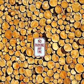 No Parking by Irina Aspinall - Digital Art Things ( no parking, wood, don't park )