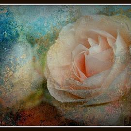 Pink flower by John Mattingly - Digital Art Things ( camellia, flower art, flower closeup, floral, flower )