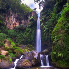Coban Talun by Jimmy Kohar - Landscapes Waterscapes