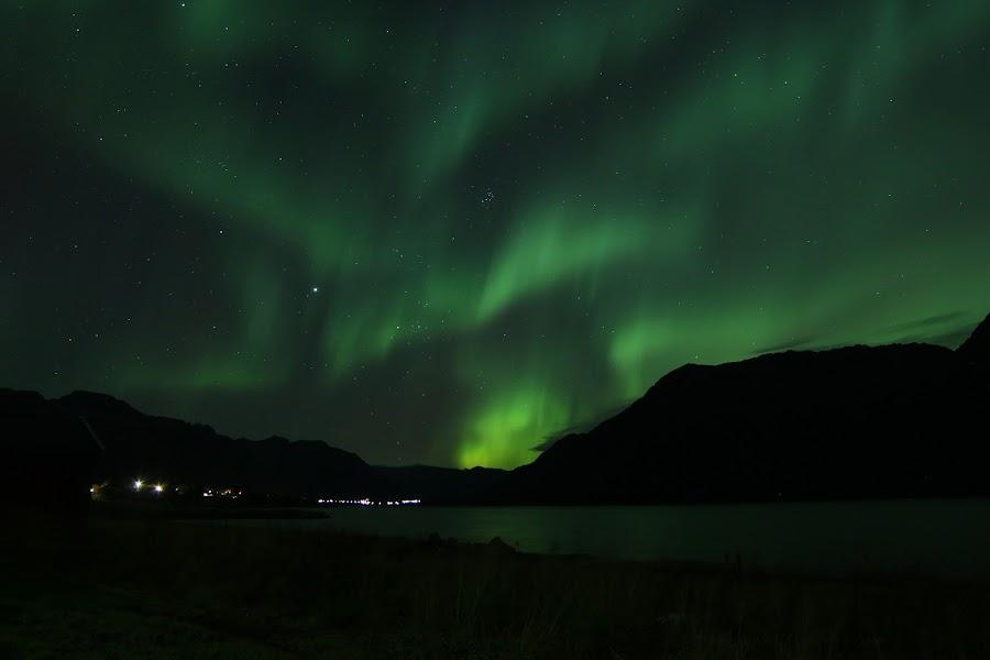 aurora boreoalis by Benny Høynes - Landscapes Starscapes ( hognfjorden, høynes, aurora, boreoalis, benny )
