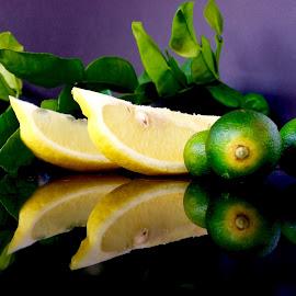 Citrus fruits by Janette Ho - Food & Drink Fruits & Vegetables