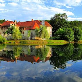 Castle by Lidija P - Buildings & Architecture Public & Historical (  )