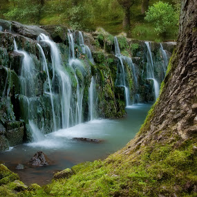 wist-falls by Alan Ranger - Landscapes Waterscapes