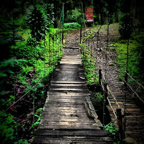 The Bridge by Iwan Siswanto Setiaonebudhi Nugraha - Instagram & Mobile Other ( hdr, indonesia, n97 mini, gunung puntang, bandung )