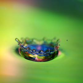 ... by Hale Yeşiloğlu - Abstract Water Drops & Splashes ( waterdrop, splash, abstract art, color, drop, drops )