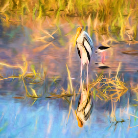 Stork in the water by Pravine Chester - Digital Art Animals ( bird, stork, nature, digital painting, landscape, painted stork, photography )