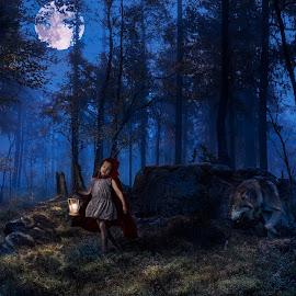 Little Red Riding Hood by Marko Paakkanen - Digital Art People ( red, wood, wolf, gilr, dark, hood, fairytale )
