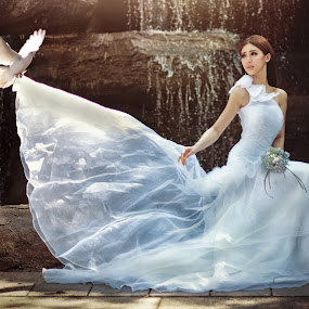 Bride & Dove by Danny Tan - People Portraits of Women