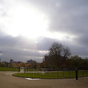 by Emma Robertson - City,  Street & Park  City Parks