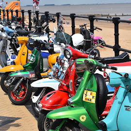 Mods  by Andy Mansell - Transportation Motorcycles ( scooters, seaside, colours )