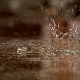 splash... by Hale Yeşiloğlu - Abstract Water Drops & Splashes ( water, splash, drop, drops, rain )