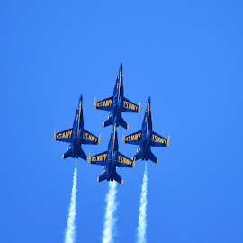 Blue Angels by Tesla Levine - Transportation Airplanes