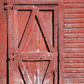 Red Door  by Todd Reynolds - Buildings & Architecture Architectural Detail