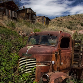Sittin in the Weeds! by Fred Herring - Transportation Automobiles
