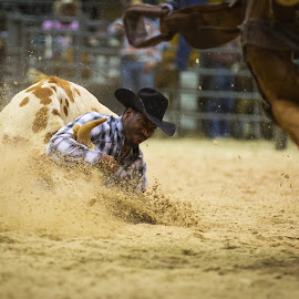 Eat Dirt by Kristina Truluck - Sports & Fitness Rodeo/Bull Riding ( horseback riding, canon, dirt spray, cowboy, horses, speed, wrestling, bill pickett rodeo, calf, rodeo, sport, bulldogging, low view, rural, country, landing, western, low viewpoint )