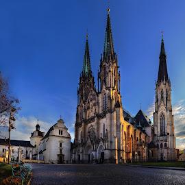 Katedrála sv. Václava by Petr Fiala - Buildings & Architecture Public & Historical ( building, color, historical, katedral, panorama )