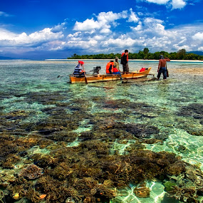 coral expedition by Alvin Lee Hahuly - Landscapes Travel