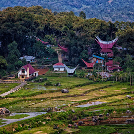 church and homes by Hartono Wijaya  - Buildings & Architecture Homes ( home, toraja, village, church, indonesia, traditional, architecture, landscape, homes, travel photography, street photography )