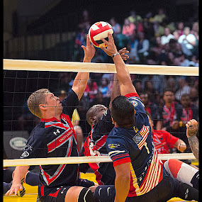 Seated Volleyball by Elk Baiter - Sports & Fitness Other Sports (  )