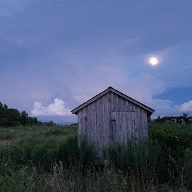 Moon lit night by Lacey Lester - Landscapes Prairies, Meadows & Fields ( #meadows, #fields, #moon )