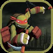 Turtle adventure ninja
