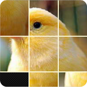 Pictures Puzzle Best Game