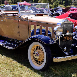 Chevy Roadster from 1932. by Doug Hilson - Transportation Automobiles ( car, chevrolet, roadster, 1932, restored )