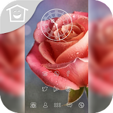 Dewy Rose theme