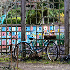 by Vonelle Swanson - Transportation Bicycles