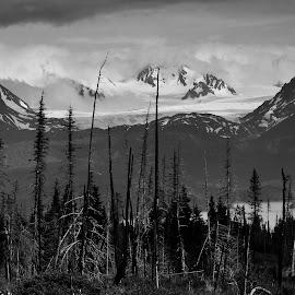 High above Kachemak Bay, Alaska by JR Hudson | Scenic Edge - Black & White Landscapes ( june, kachemak bay, scenic edge photography, alaska, monochromatic, east end road, black and white, homer )
