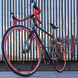 by Boldbaatar Tsend - Transportation Bicycles
