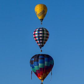 Up, up and away by Gary Tindale - Transportation Other ( flight, blue, transport, aligned, triple, three, balloon, colours,  )
