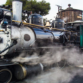 Ol Number 41 Image by Rich Gill by Rich Gill - Transportation Trains ( steam locomotive, rich amen gill, canon t5i, california, steam train, train, rich gill )