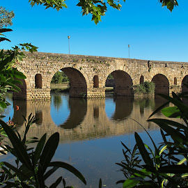 Puente romano. Mérida. Spain by Luis Felipe Moreno Vázquez - Buildings & Architecture Bridges & Suspended Structures ( mérida, architecture, historical, bridge, spain )